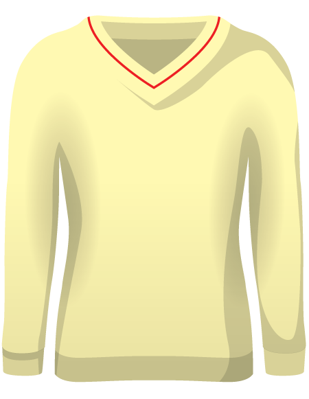 Long Sleeve Cricket Sweaters