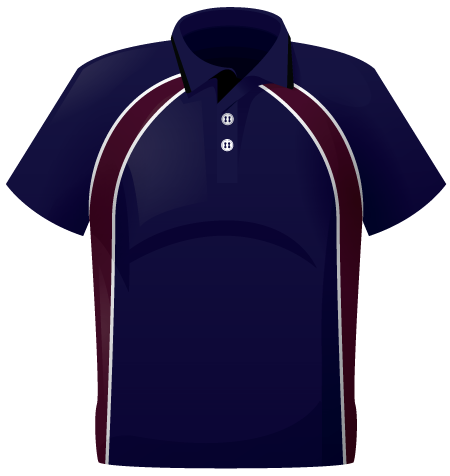 Team Colours Stock Polo Shirts
