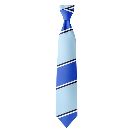 Style 5 Custom Polyester Ties